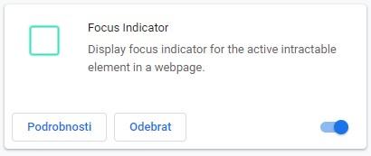 Focus Indicator